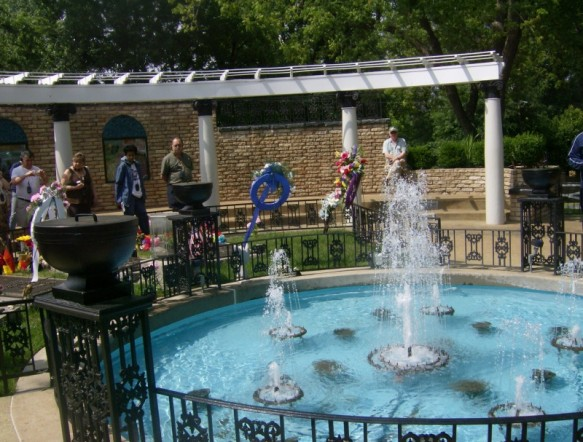 Going To Graceland 2008